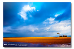 Pure Gold. ([ Kane ]) Tags: ocean longexposure sun storm tree water clouds print photography sand dusk australia mangrove qld queensland cokin nd400 december2010 kanegledhill 30december2010