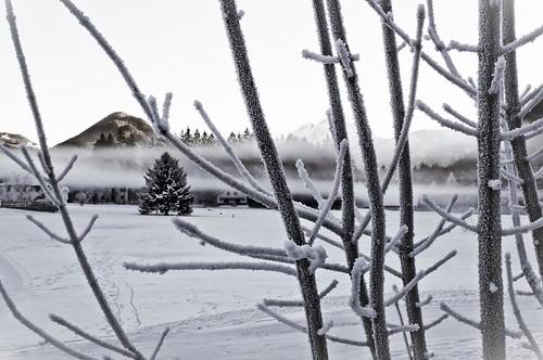 Valle Vigezzo - 02.01.2011