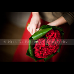 Love is just a word until someone comes along and gives it meaning. (** Nico **) Tags: wedding flower girl rose canon bouquet gettyimages nicodepasquale