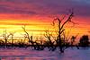_MG_9366 (Wai Cheong Chan) Tags: lake sunrise landscape menindee pamamaroo andychan