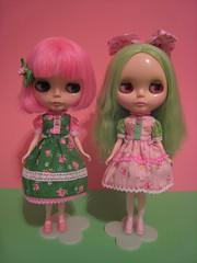 Prima Dolly Peony and Amaryllis Blythe