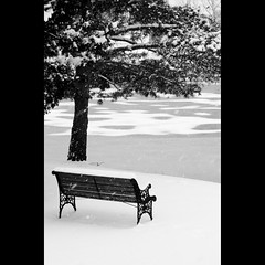 HBM (AgentThirteen) Tags: snow nature weather bench frozen pond hbm canonpowershots95