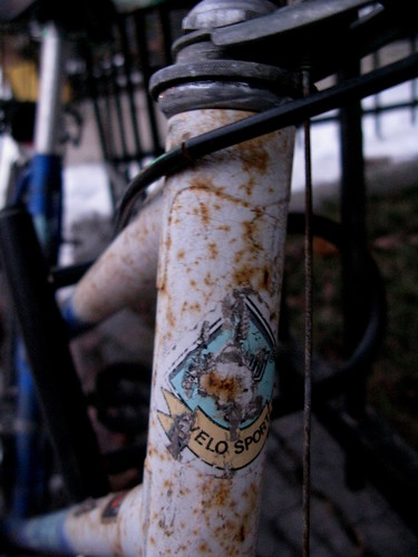 Montreal Head Badge Velo sport