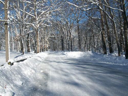 winter2011 026