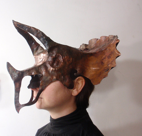 triceratops worn profile
