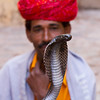 The Snake Charmer (Popeyee) Tags: world pictures travel portrait music india man macro face closeup canon photo dance asia flickr cobra gallery foto photographer dancing image photos pics reptile snake indian picture culture documentary social images fotos around serpent charming bild snakes cultures indien bilder journalist snakecharmer rajasthan charmer 2010 serpents photojournalist kingcobra 2011 mehrangarhfort indiancobra hindusthan joghpur popeyee popeyeeflickr landofsnakecharmers