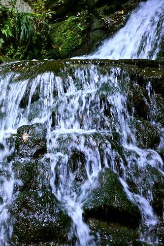 鶯啼庵の滝1