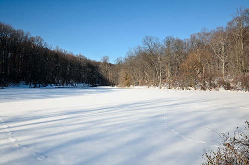 Diamond Mill Pond [Winter 2011]