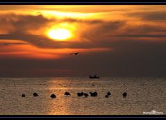 Ingredientes con sabor a Eclipse (manel pons) Tags: sun sol sunrise eclipse fisherman alba flamingos amanecer catalunya tarragona flamencos pescador matinada deltadelebre terresdelebre deltadelebro larapita flamencs santcarlesdelarapita manolopons manelpons elsalfacs montsi httpballoonaprivatthumbloggercom