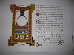 Red Oak - Monday night (Falashad) Tags: sca illumination calligraphy redoak scroll insular