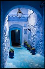 Light Dome (nachetz) Tags: trip viaje blue detalle color detail texture textura azul canon textures morocco colored chaouen chefchaouen marruecos añil eos400d nachetz