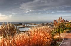 Lyme Regis (gracust) Tags: lymeregis jurassic coastline coast dorset thecobb cobb seascape harbour fossils landscape