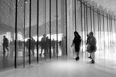 Os Outros (the others) (Francisco (PortoPortugal)) Tags: 1942016 20160917fpbo3994 pb bw pessoas people interiores indoors terminaldecruzeiros cruiseterminal matosinhos porto portugal portografiaassociaofotogrficadoporto franciscooliveira