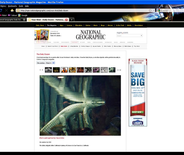National Geographic Daily Dozen: November 24, 2010