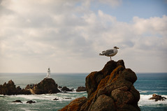 Corbire Lighthouse - Jersey (M.Jerka) Tags: lighthouse color beach landscape island vacances nikon sigma jersey angleterre paysage phare couleur 2010 le plages d90