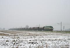 La TIGRE delle nevi... (Massimo Minervini) Tags: train merci rail cargo neve lombardia treno tigre fs cremona trenitalia mrv locomotore e652 canon400d malagnino tramogge e652xmpr