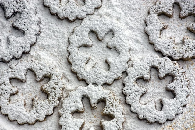 Confectioners' sugar dusted Pecan Linzer Cookies