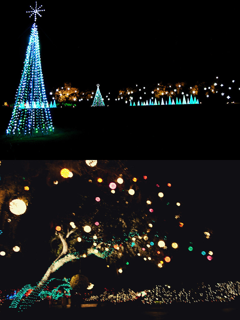 Bellingrath Gardens Christmas lights 4
