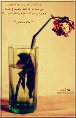 """"""" Last chance !  """" (Smile photogr@phy) Tags: flower smile canon eos algérie alger 400d canoneos400d أحلام مستغانمي فوضىالحواس أحلاممستغانمي"""