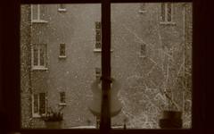 IMG_6346 (pellegrini_paris20) Tags: snowflake schnee white snow paris canon eos flake neige weiss blanc ville flocons flocon itsnows flocke flocken schneeflocke schneit flocondeneige souslaneige esschneit floconsdeneige ilneige 1000d