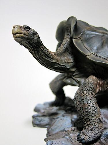 giant_tortoise_1
