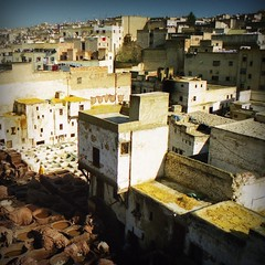 DMa37 (Domitilla Asquer) Tags: africa travel leather photo travels morocco marocco viaggi pelle fes citt treatment tintura pellame tinture domitillaasquer
