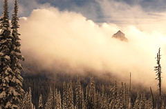Pinnacle Peak Emerges from the Heavens (Deby Dixon) Tags: winter usa snow storm tourism weather clouds washington nationalpark travels nikon paradise dramatic snowshoeing mtrainier deby allrightsreserved 2010 freshsnow winterscene mtrainiernationalpark pinnaclepeak tatooshmountains debydixon debydixonphotography