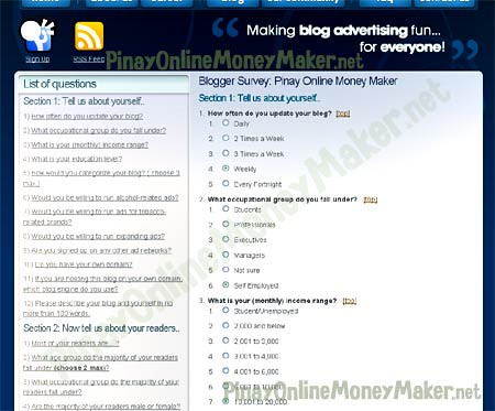 Blogger Survey form - How to setup Nuffnang ads - PinayOnlineMoneyMaker.net