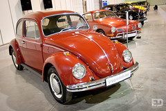 "VW Beetle • <a style=""font-size:0.8em;"" href=""http://www.flickr.com/photos/54523206@N03/5267415818/"" target=""_blank"">View on Flickr</a>"
