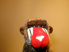 cheeks (Henry_Grey) Tags: red portrait brown color colour macro colors face canon toy monkey colours dof expression background clown flash powershot business ty baboon frown facial mandrill g9 ckeeks ckeek