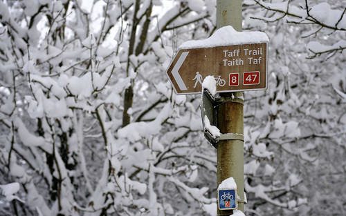 Taff Trail Sign In The Snow