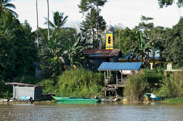 RYALE_Kinabatangan_River_29