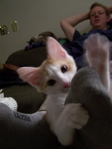 nov 111 Clawring over Lucas' foot!