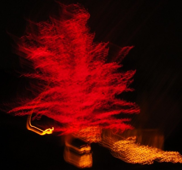 Blurred image of a tree at night, completely covered in red Christmas lights