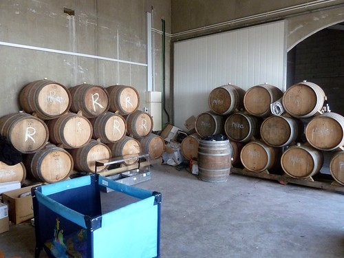 Barrels of Riesling (left) and Pinot Noir (right)