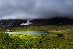 Yak's Meadow.. (M Atif Saeed) Tags: pakistan lake nature water landscape explore frontpage atifsaeed gettyimagespakistanq1