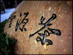 茶, Tsaa, Chá, Tea, Tee, Thee (eric+x) Tags: 120 mamiya 645 slide shenzhen fujifilm rvp100 protl octeast