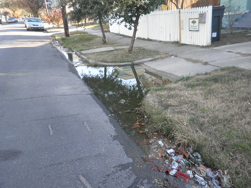 8400 Block of Apricot