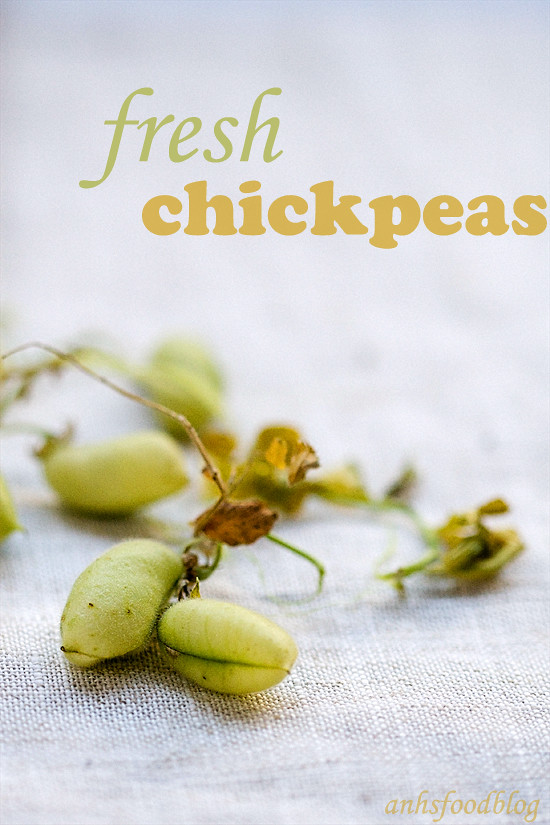 Fresh chickpeas