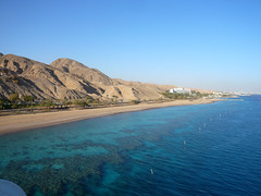 Coral Reef Eilat by Madmartigand, on Flickr