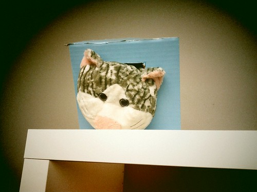 Day 5 - Ceiling Cat is Watching You