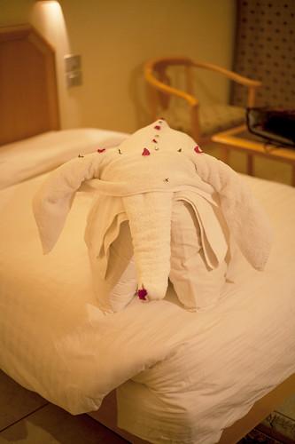 Håndkleelefant