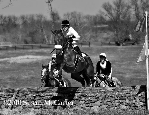 Radio Flyer and Gus Brown, Rokeby Bowl, Steeplechase horses