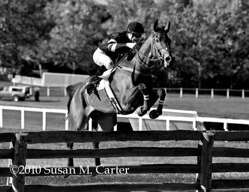 I'm Telling and Jacob Roberts, steeplechase horse racing