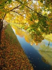 (natacha92) Tags: autumn nature austria klagenfurt lendkanal