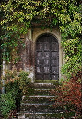 Secret Garden? - EXPLORED (Beccy Melling) Tags: door old home wall gardens mystery garden wooden carved moss cornwall estate antique secret steps january victorian property ivy stairway adventure foliage explore doorway mysterious 10th curious nationaltrust secretgarden cornish studded lanhydrock 2011 thesecretgarden explored