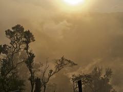 (wawrus) Tags: park trees mist fog clouds sunrise indonesia volcano java east mount national viewpoint bromo semeru tengger penanjakan