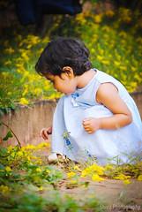 ? (Shivz Photography) Tags: flowers angel littlegirl yellowflowers cutegirl littleangel heavenandearth