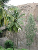 20090727_G9_IMG_2940 (Gogolcat) Tags: india climbing ramanagaram