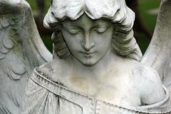 Weeping Angel of Jakarta (Tempo Dulu) Tags: statue indonesia jakarta patung weepingangel cgth museumtamanprasasti